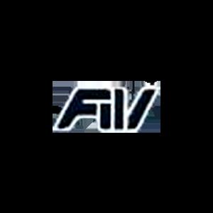 Fondo de Inversiones de Venezuela Logo