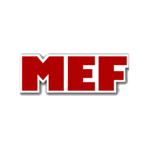 Ministerio de Hacienda Logo