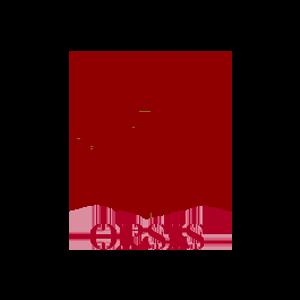 Opsis Logo